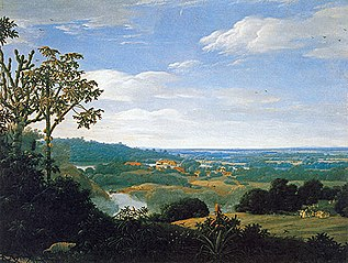 Brazilian landscape with armadillo