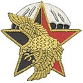 French DGSE Action Division Insignia.jpg