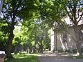 FriedhofSeckbach4.jpg