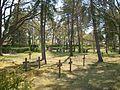 Friedhof Königswartha 1.JPG