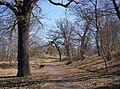 Frisens park 2009c.jpg