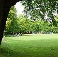 Fußballplatz hinter dem Stadion, Hier wird Waldhof bald seine Spiele austragen, wenn sie noch weiter absteigen. - panoramio.jpg