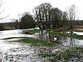 Full to bursting - geograph.org.uk - 667293.jpg