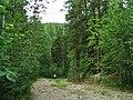 G. Miass, Chelyabinskaya oblast', Russia - panoramio (120).jpg