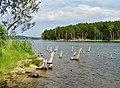 G. Miass, Chelyabinskaya oblast', Russia - panoramio (133).jpg