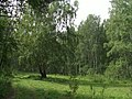 G. Miass, Chelyabinskaya oblast', Russia - panoramio (46).jpg