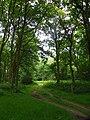 GOC Berkhamsted & Frithsden 024 Ashridge Estate (28388093931).jpg