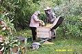 G i E Marcysiakowie z pszczołami - panoramio.jpg