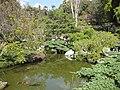 Gardenology-IMG 4954 hunt10mar.jpg
