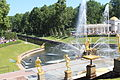 Gardens of Peterhof IMG 4061.JPG