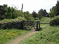 Gate on coast path - geograph.org.uk - 817758.jpg