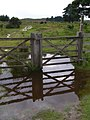 Gate on the eastern edge of Bisterne Common, New Forest - geograph.org.uk - 501336.jpg