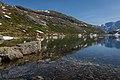 Gaularfjellet tunliweb 4.jpg