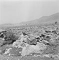 Gezicht op een heuvel met daarvoor een stenige vlakte ergens in Galilea, Bestanddeelnr 255-4637.jpg
