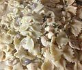 Gfp-chicken-mushroom-pasta.jpg