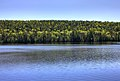 Gfp-michigan-fort-wilkens-state-park-across-the-lake.jpg