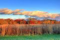 Gfp-wisconsin-madison-clouds-over-trees-uw-arboretum.jpg