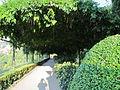 Giardino bardini, galleria verde 02.JPG