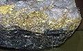 Gold and quartz (Main Ledge, 3050 Level, Homestake Mine, Lead, Black Hills, South Dakota, USA) 6 (17234258471).jpg