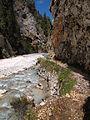 Gozd Martuljek - river and trail.jpg