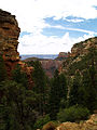 Grand Canyon. Cliff Spring trail. 09.jpg