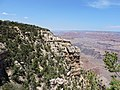 Grand Canyon Village, AZ 86023, USA - panoramio (26).jpg