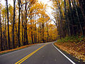 Great Smoky Mountains National Park in Autumn.jpg