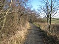 Green Lane near South Sharpley - geograph.org.uk - 314246.jpg