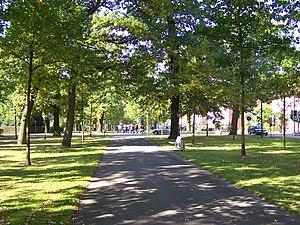 "Bad Arolsen - The ""Grosse Allee"" or ""Grand Avenue"""