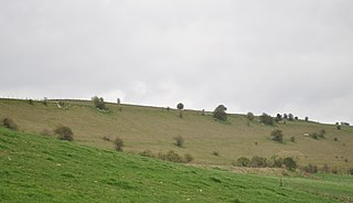 Grovely Castle Iron Age univallate hill-fort in Wiltshire, England