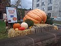Guess the Weight pumpkin contest State Street downtown Montpelier VT September 2018.jpg