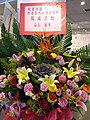 HKCL 香港中央圖書館 CWB 展覽 exhibition flowers February 2019 SSG 14.jpg