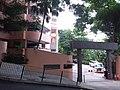 HK ML 香港半山區 Mid-levels 雅賓利道 the Albany Road April 2020 SSG 01.jpg