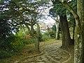 Hakone Ashinoko lake dsc05538.jpg