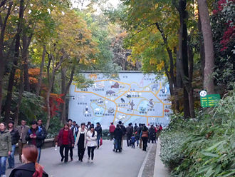 Hangzhou Zoo - main road