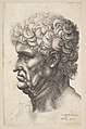 Head of a man with thick curly hair in profile to the left MET DP823763.jpg