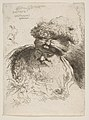 Head of an old bearded Man with a Turban MET DP816527.jpg