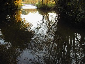 River Enborne - Image: Headley ford looking south geograph.org.uk 82101