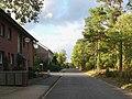 Heideweg01.jpg