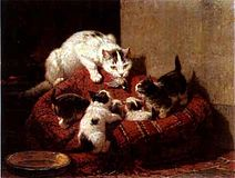 Henriette Ronner-Knip Education.jpg