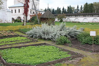 Monastery garden of St. Michael the Archangel Monastery in Yuryev-Polskiy (Vladimir obl., Russia) with various medicinal herbs - wikimedia- Alaexis