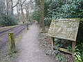 Holmesfield Park Wood - Easy Access Trail - geograph.org.uk - 1229007.jpg