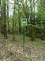 Holovne Liubomlskyi Volynska-zakaznyk botanical Spruce forest-second guard board.jpg