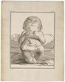 Homo sapiens - pasgeborene - 1700-1880 - Print - Iconographia Zoologica - Special Collections University of Amsterdam - UBA01 IZ19600113.tif