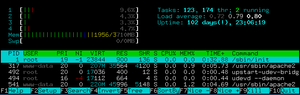 Uptime - Htop adds an exclamation mark when uptime is bigger than 100 days