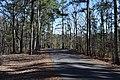 Hugh White State Park Road.jpg