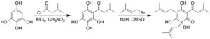 Humulone - Synthesis of humulone from 1,2,3,5-tetrahydroxybenzene