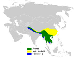 Hypsipetes leucocephalus distribution map.png