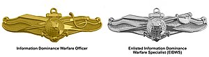 Badges of the United States Navy - Navy Information Warfare Device