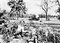 IJA soldiers attacking M3 Stuart tank.jpg